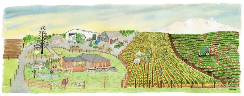 Marcia-farm-web